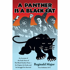 A Panther is a Black Cat - Reginald Major The Key Bookstore